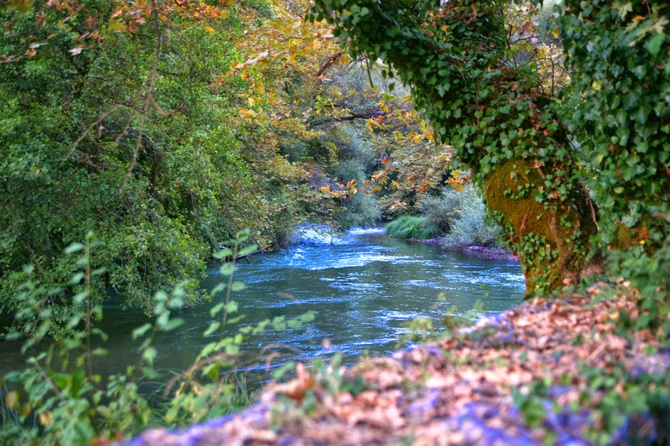 You are currently viewing Ιερέας κάνει ό,τι μπορεί για να είναι καθαρός ο ποταμός Καλαμάς