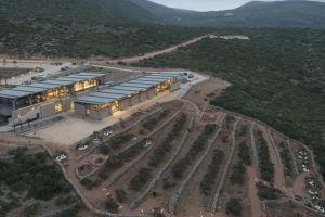 Εγκαινιάζεται αύριο το πρώτο μουσείο Μαστίχας στη Χίο, από τον Αρχιεπίσκοπο Αθηνών και τον Πρόεδρο της Δημοκρατίας…