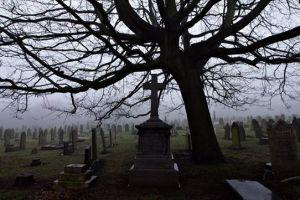 Βέροια: Ανατριχιαστικό εύρημα κοντά σε νεκροταφείο