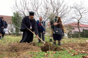 Μητροπολίτης φύτεψε ελαιόδεντρα σε προαύλιο ναού…