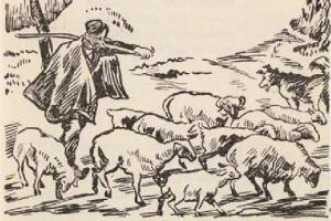 Αν ο τσομπάνος δεν μπορεί να φυλάξει τα πρόβατά του, θα τα φάει ο λύκος!